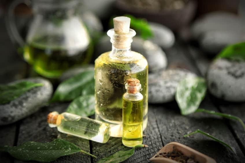 Teebaumöl: Test & Empfehlungen (08/20)