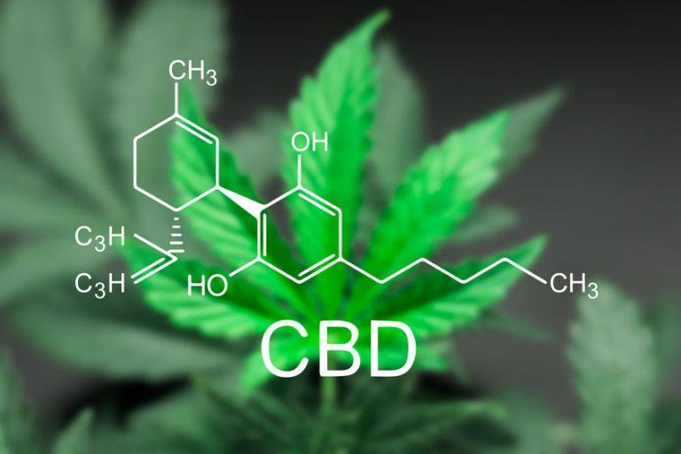 hat CBD Nebenwirkungen-1