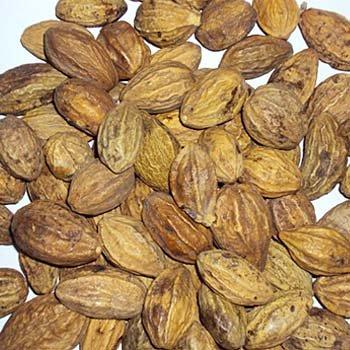 Harde Fruit Haritaki Whole Terminalia Chebula Whole Ayurveda 250 g