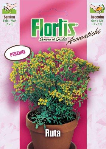 Flortis 4357040 Weinraute (Weinrautesamen)